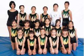 St.Paul Gymnastics